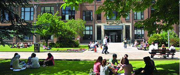 hull-uni-campus-summer